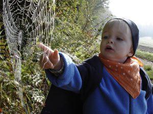 Foto von Sonja Wessel: Kind entdeckt Spinnennetz